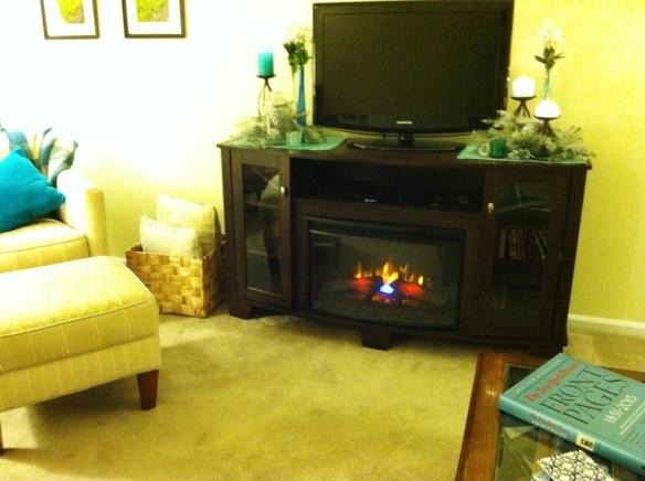fireplace 026