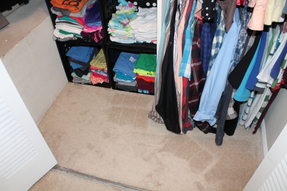 Closet Clean Out (13)