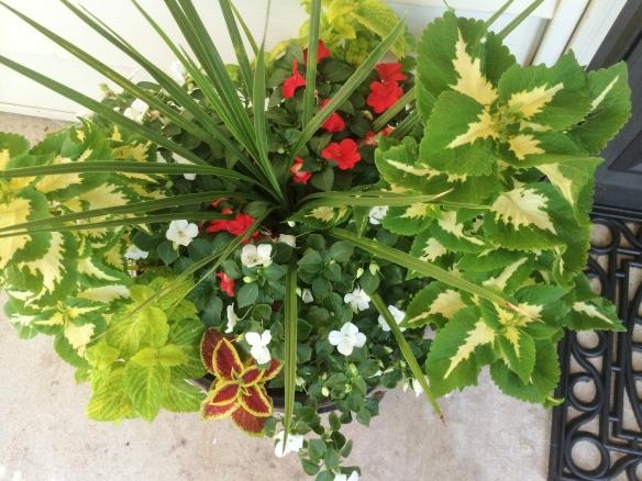 flower pot 116 (2)