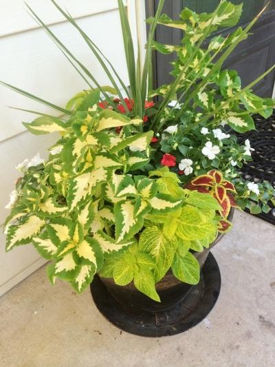 flower pot 118